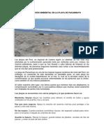Argumentos sobre la contaminación de la playa de Pacasmayo