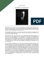 Evola Der Blick in Die Zukunft.pdf