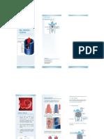 folleto sistema venoso desarrollo