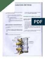 Articulaciones-Tórax.docx