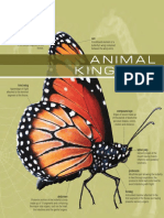 The Visual Dictionary of Animal Kingdom.pdf