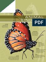 The Visual Dictionary of Animal Kingdom.pdf
