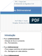 MESOI_Fluxo_Bidimensional