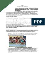 300335911 Pruebas de Campo