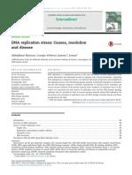 Mazouzi Et Al 2014 DNA Replication Stress