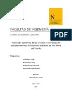 Valoración Económica Lomas de Paraiso Vmt.