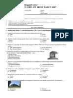 USBN IPS.pdf