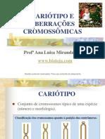 Apres Cariótipo e Aberrações Cromossômicas Biologia