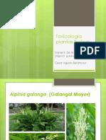 Toxicología Planta