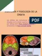286404883-Anatomia-y-Fisiologia-de-La-Orbita.pptx