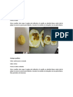 Caracterizacion de frutas