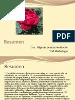 Resumen-Tesis.pptx