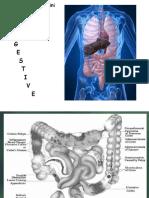 Catatan Bedah Digestive