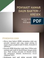 27306_7. Penyakit Hawar Daun Bakteri PPT Pestisida