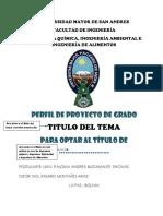 Caratula perfil proyecto.pdf