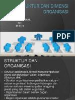 Struktur Dan Dimensi Organisasi DONA SARIKENDE CS1