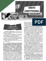 Direito Constitucional - Sylvio Brito