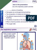 igcse biology  Respiratory System