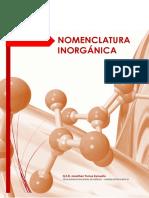 Nomenclatura inorgánica básica.pdf