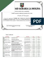 Certificado Curso Capacitacion