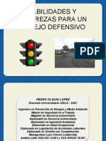CURSO MANEJO DEFENSIVO 2017 Pedro Olguin.pdf