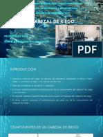 CABEZAL DE RIEGO.pptx