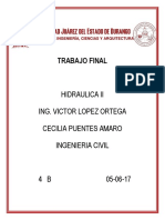 Cecilia Puentes Amaro-trabajo Final Hidraulica II