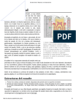 Esmalte dental - Wikipedia, la enciclopedia libre.pdf