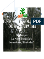 Historia Evolucion Hondupalma