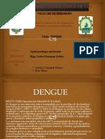 DENGUE Exposicion.pptx33333.