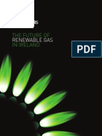 Future of Renewable Gas in Ireland