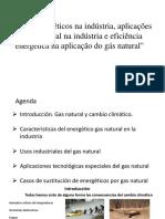 Usos Gas Natural en La Industria 1