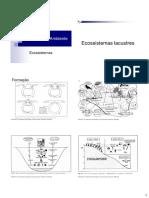 Ciencia do ambiente - Aula 4 - Ecossistemas terrestres B.pdf