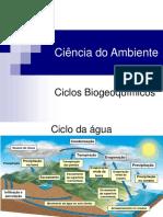 Ciencia do ambiente - Aula 5 - Ciclos biogeoquimicos.pdf