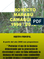 Marabu Proyecto