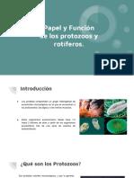Papel y Función de Los Protozoos y Rotíferos.