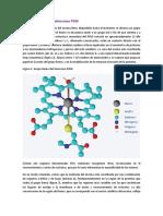 Estructura Del Citocromo P450