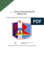 LAPORAN PRAKTIKUM ENZIM.docx