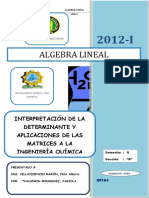 Interpretación de Determinantes y Aplicaciones de Matrices.docx