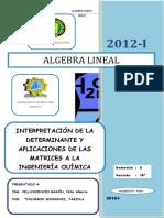 Interpretación de Determinantes y Aplicaciones de Matrices.docx