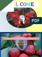 Post Harvest Handling in Litchi
