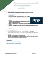 Lab Microprocesadores_hoja Guia - Practica 10