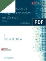II Curso de Cirugía Lima Peru