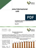 Panorama Internaciona Café 2017