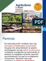 aralin21-sektorngagrikultura-151230092852