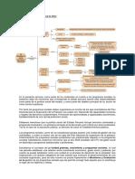 5 Gps Los Programas Sociales en El Peru