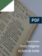 Voces indígenas en letra de molde