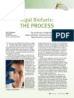 Alage Biofuel - The Process