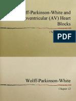 10 AV Blocks