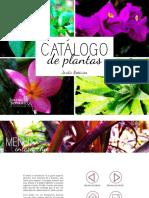 Catalogo de Plantas Revisado